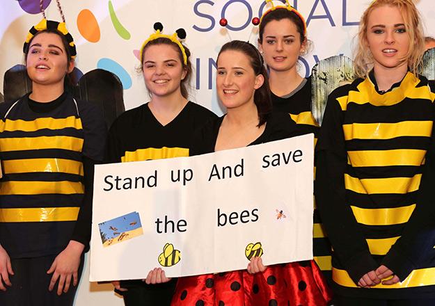 No BEE, No Me!